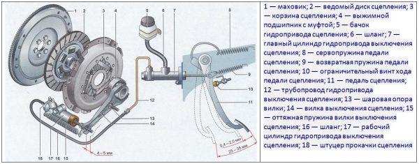 Принцип работы сцепления ВАЗ 2106