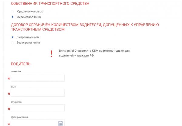 Скриншот страницы сайта РСА с графами для заполнения данных о водителе