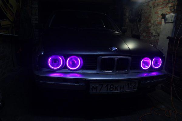 Фиолетовые ангельские глазки